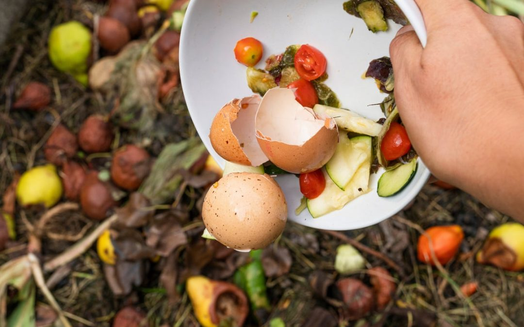 Tips on How to Start Home Composting